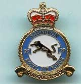 99 Sqn Crest Pin Badge